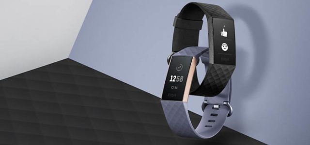 How Fitness Bands Can Help You Stay Active