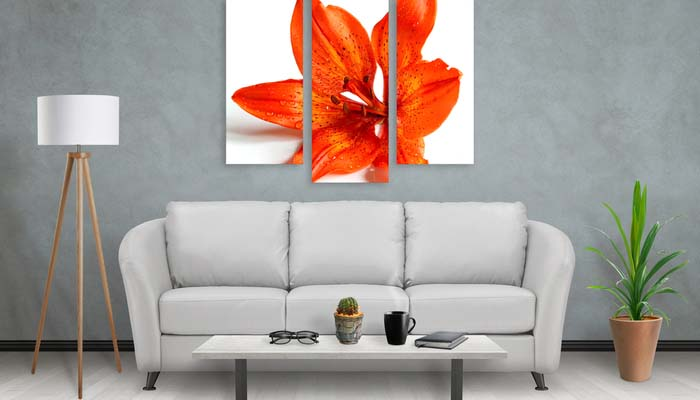 Looking for a Great Gift? Order Canvas Prints Online