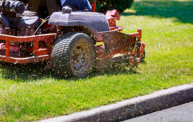 Lawn Care: Taking Care of Your Grass