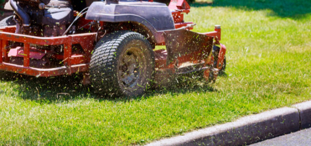 Lawn Care: Taking Care of Your Grass This Summer
