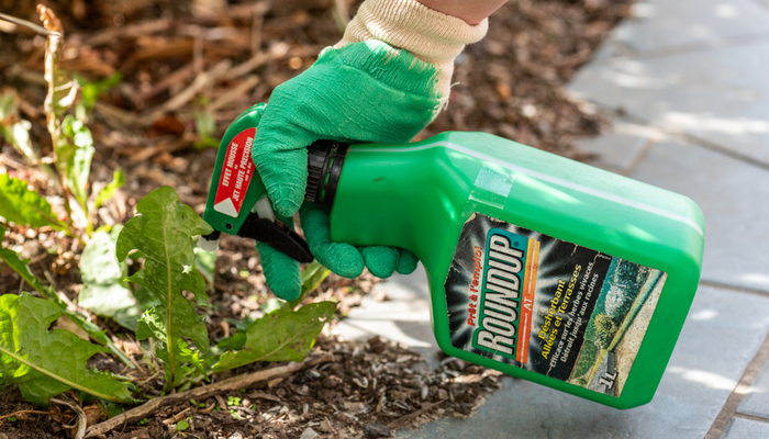 Is Your Weed Killer Giving You Cancer? Roundup Lawsuit Awards $289 Million!
