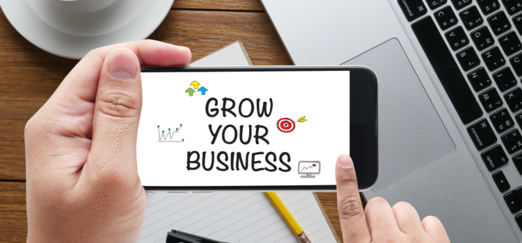 Grow Your Business NOW! A How-to-Guide